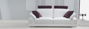 Contemporary Leather Sofa Picture