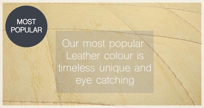 Kara-suite-Pendragon-Leather